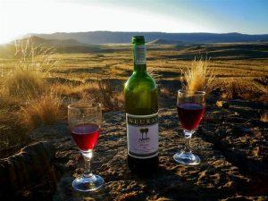 namibya şarap